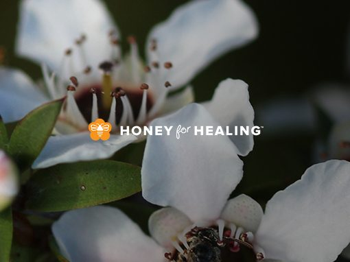 Honey For Healing