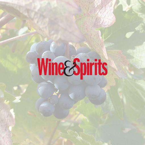 Wine Spirits Magazine The Steve Williams Design Office